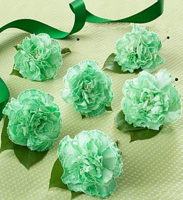 St. Patrick's Day Boutonniere Package