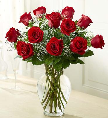 Rose Elegance??¢ Premium Long Stem Red Roses
