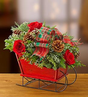 Traditional Tidings Sleigh Arrangement